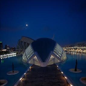 Ciudad de las Artes y las Ciencias by VAM Photography - Buildings & Architecture Other Exteriors ( exterior architecture, spain, valencia, travel, architecture,  )