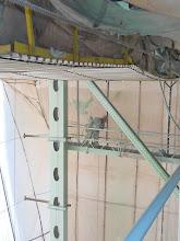 Photo: intermediate coat paint application