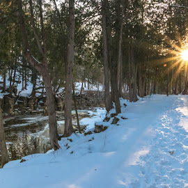 Winter Walking Trail by Kathy Suttles - Landscapes Weather