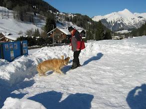 Photo: Photos prisent de 2003 à 2007 Promenade des 4 pattes , chien