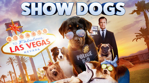 Hotel For Dogs Youtube