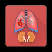 Human Anatomy [Offline]