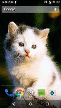 Download Cute Cat Live Wallpaper Apk Latest Version App For Android
