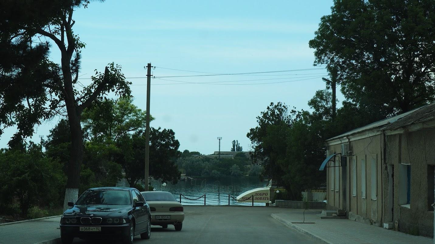 Аллея в Черноморском. Крым. Июнь 2015