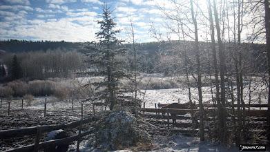 Photo: Moose Mountain Ranch near Bragg Creek