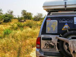 Photo: Kruger NP - Zikos & some zebras