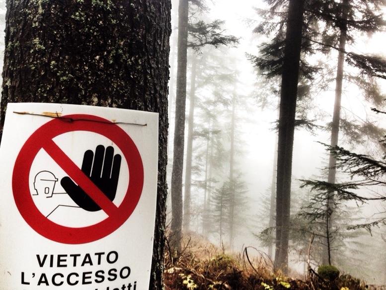 Nice sign...