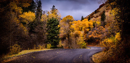Photo: {Let it Linger}  From Tuesday up Nebo Loop ... fall is making it's way down the mountains and into the valley  I'm heading up Provo canyon in 20 minutes to see what's left up there. If I'm good I can find something and make it work.
