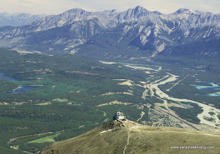 Photo: Athabasca River valley, from the summit of The Whistlers, Jasper National Park