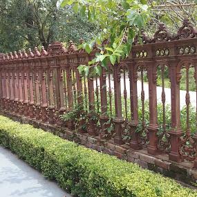 Wrought Iron Fence by Denise DuBos - Buildings & Architecture Public & Historical ( visitors, historic, greets, darrow, boxwood hedge, wrought iron, houmas house plantation, louisiana, fence )