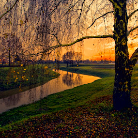 Autumn colored with the sunset by Andrija Vrcan - City,  Street & Park  City Parks ( autumn, sunset, trees,  )