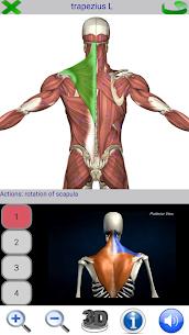 Visual Anatomy – Latest MOD APK 2
