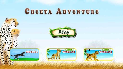 Cheetah Adventure
