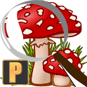 Mushroom Tracker Premium icon