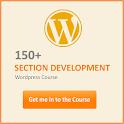 Section Development WP icon