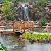 HD Garden Backgrounds