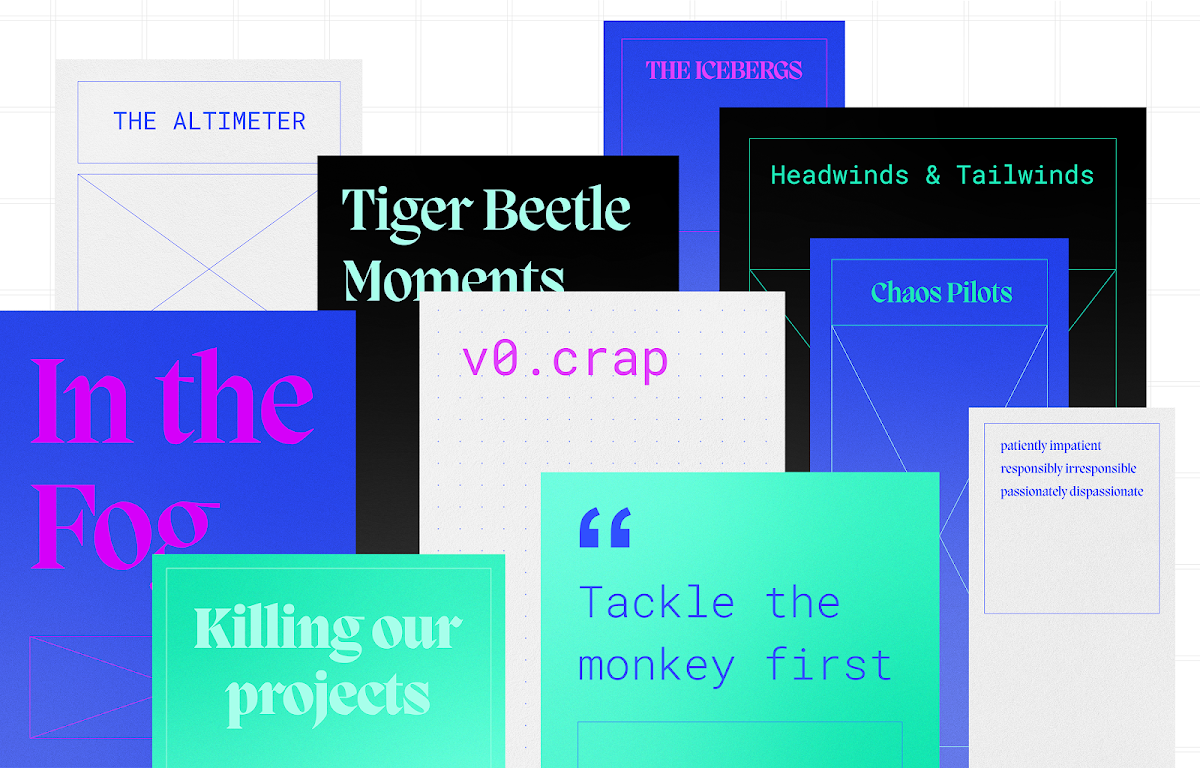 The monkey, the tiger beetle and the language of innovation