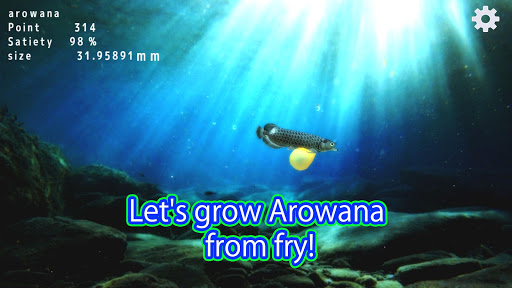 Arowana raising from fry 1.1.3 screenshots 1