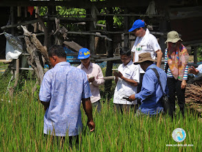 Photo: Data collection and discussion, Srikhoraphum, Surin
