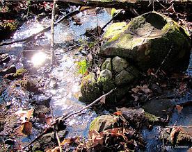 Photo: February 5, 2012 - Winter Creek #creative366project