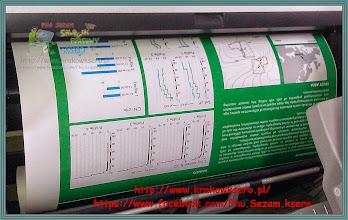 Photo: poster A0 - papier Matt 180g/mPrzyjmujemy zlecenia poprzez e-mail.
