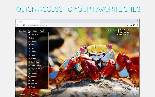 Crab Wallpaper HD Crabs New Tab