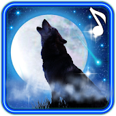 Wolf Moon Song