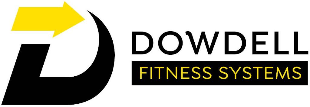 DFS- logo