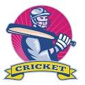 IPL cricket Prediction icon