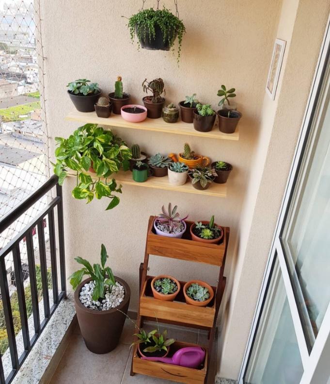 Varanda pequena com prateleiras com vasinhos de plantas, suporte de madeira de chão com vasos de plantas e vasos no chão.