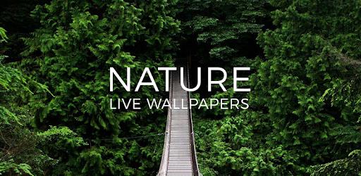 Download 600 Wallpaper Pemandangan Bergerak Untuk Hp HD Terbaru