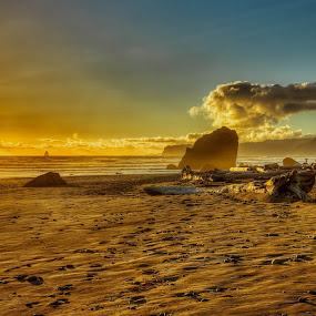Another Day Another Picture by CEBImagery .com - People Street & Candids ( clouds, water, sand, tonemapped, hdr, wood, ruby, waves, #photomatix, ocean, drift, beach, photography, seastacks, photograher, washington, sky, sunset, #vscofilm, sunrise, rocks )