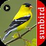 com.isoperla.birdsongidusa