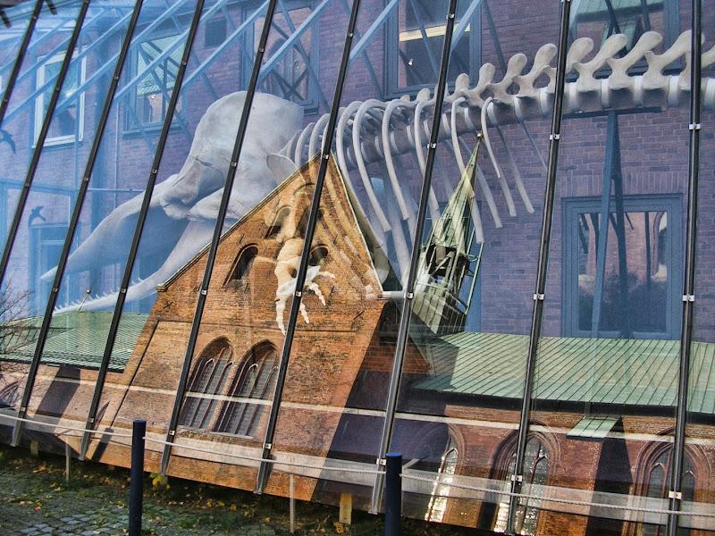 Scheletri dietro il vetro... di Gianluca Presto
