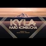 Kyla Hard Hibiscus Lime Kombucha