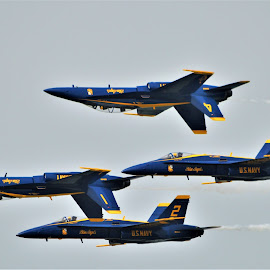 Diamond by Benito Flores Jr - Transportation Airplanes ( flight, pilots, navy, blue angles, military, texas, formation )