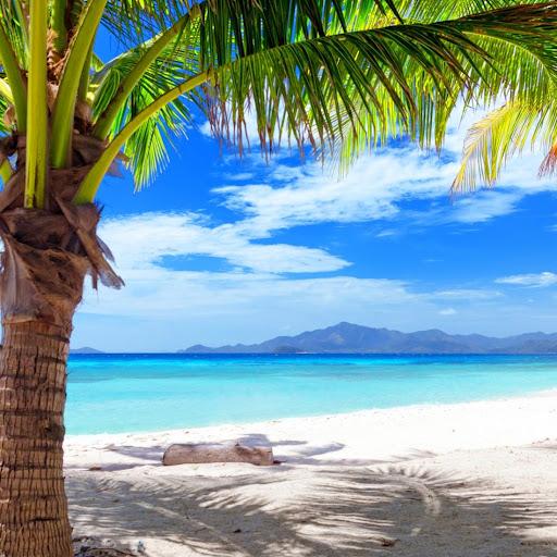 玩個人化App|海灘 動態壁紙免費|APP試玩