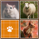 Memory - Animals icon