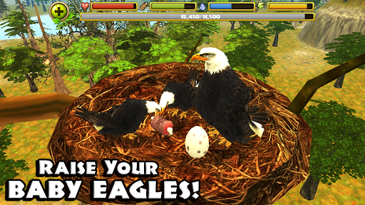 Eagle Simulator™ - screenshot