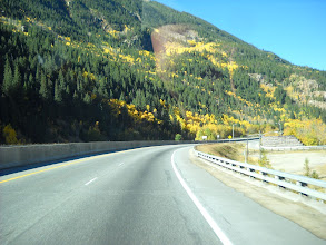 Photo: Colorado has not had great aspen colors this fall. We were hoping the Henrys would be better. This is near Vail.