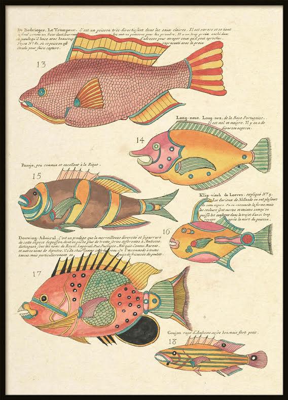 Vintage Fishes 8, Poster