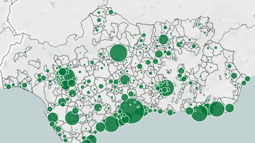 Mapa con los casos diagnosticados en los municipios andaluces.