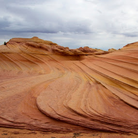 Second Wave by Stephen Berry - Landscapes Deserts