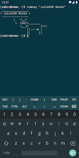 JuiceSSH - SSH Client screenshot 3