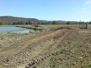 Photo: Southern Berm at Pond Site 1