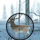 Download Wild Deer Hunter Adventure For PC Windows and Mac