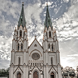 The Cathedral by Richard Michael Lingo - Buildings & Architecture Places of Worship ( georgia, buildings, savannah, cathedral, architecture )