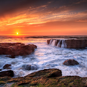 Pacific Gold by Paul Judy - Landscapes Waterscapes ( sunset, pacific, santa cruz, beach, coast )