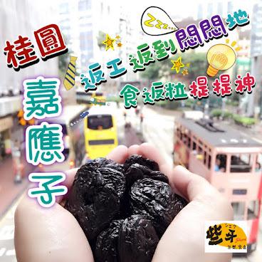 桂圓嘉應子(3包起計)