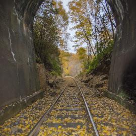 Rails to Fall by Travis Houston - Transportation Railway Tracks